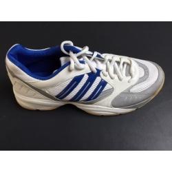 Paire de chaussures ADIDAS Bigroar indoor