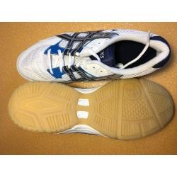 Paire de chaussures Indoor ASICS Control